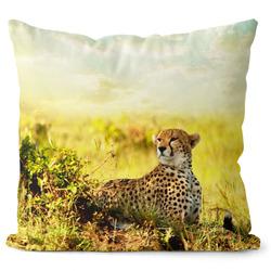 Polštář Gepard