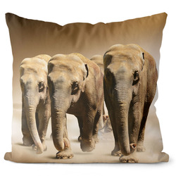Polštář Stádo slonů