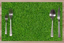 Prostírání Grass