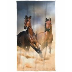 Osuška Koně 70x140