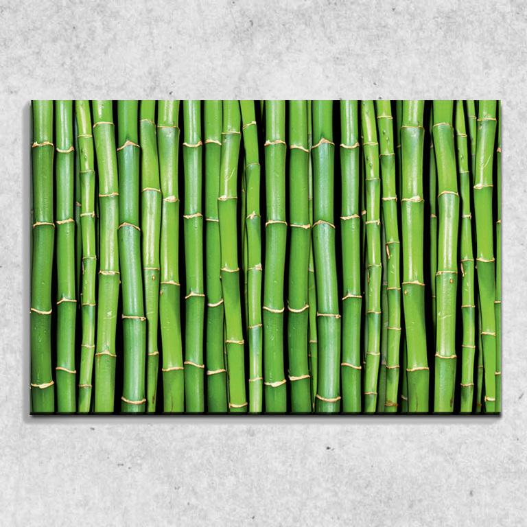 Foto na plátně Bambus 90x60 cm
